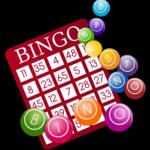BINGO WEBSITES